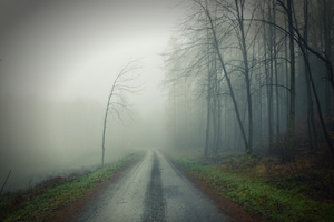 fog blur future confused disoriented dark misty pathway cautious